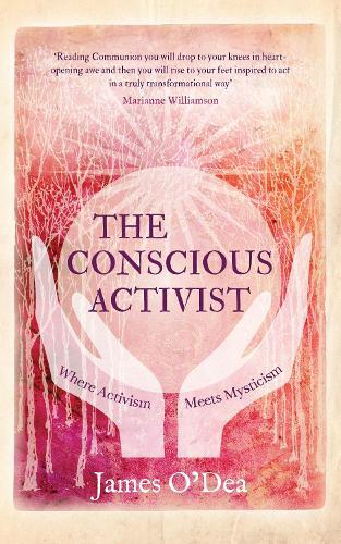 Conscious Activist (Paperback)