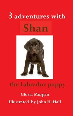 Three Adventures with Shan (Paperback)
