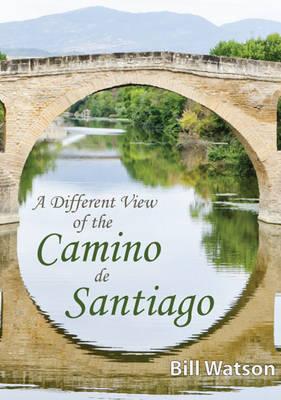 A Different View of the Camino De Santiago (Paperback)