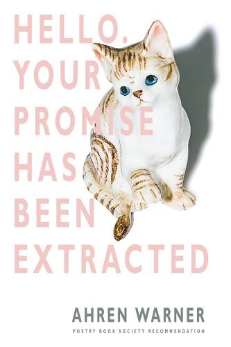Hello. Your Promise Has Been Extracted (Paperback)