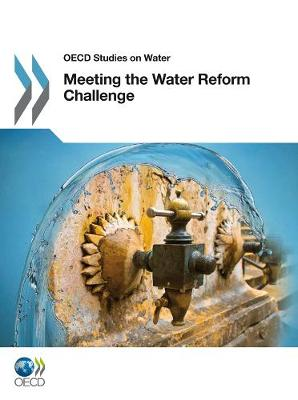 Meeting the Water Reform Challenge - OECD Report Series (Paperback)