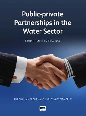 Public-private Partnerships in the Water Sector: From Theory to Practice (Paperback)