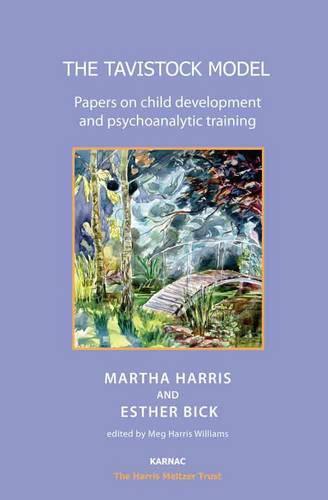 The Tavistock Model: Papers on Child Development and Psychoanalytic Training - The Harris Meltzer Trust Series (Paperback)