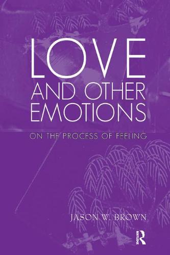 Love and Other Emotions: On the Process of Feeling (Paperback)