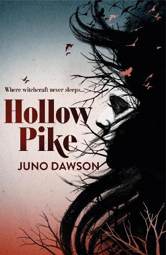 Hollow Pike (Paperback)