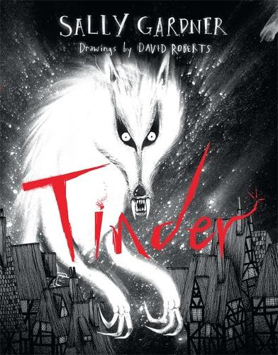 Tinder (Hardback)