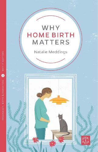Why Home Birth Matters - Pinter & Martin Why it Matters (Paperback)