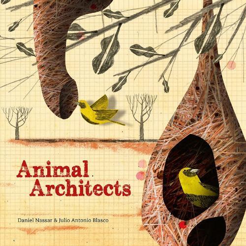 Animal Architects: The brilliant builders of the animal kingdom (Hardback)