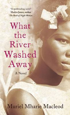 What the River Washed Away (Paperback)
