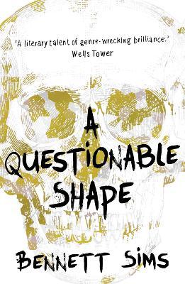 A Questionable Shape (Paperback)