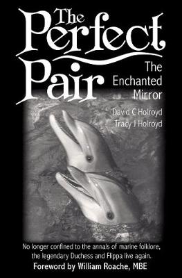 The Perfect Pair: The Enchanted Mirror (Paperback)