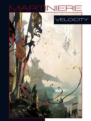 Velocity (Hardback)