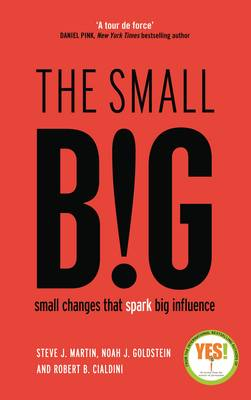 The small BIG: Small Changes that Spark Big Influence (Paperback)