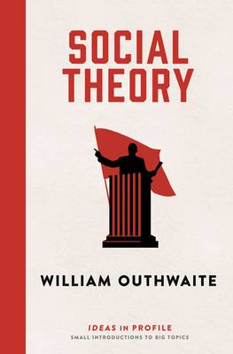 Social Theory: Ideas in Profile: Ideas in Profile - Ideas in Profile (Paperback)
