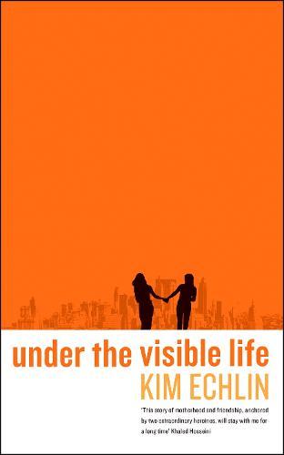 Under the Visible Life (Hardback)