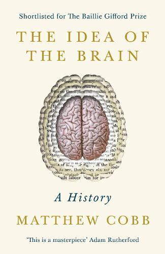The Idea of the Brain: A History (Hardback)