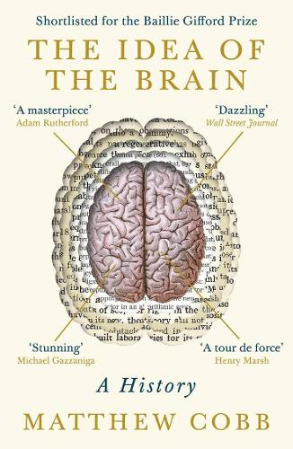 The Idea of the Brain: A History (Paperback)