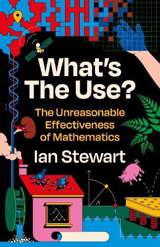 What's the Use?: The Unreasonable Effectiveness of Mathematics (Hardback)