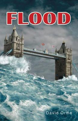 Flood - Shades 2.0 (Paperback)
