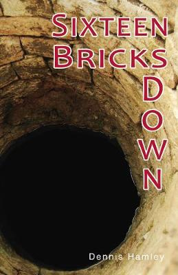 Sixteen Bricks Doiwn - Shades 2.0 (Paperback)