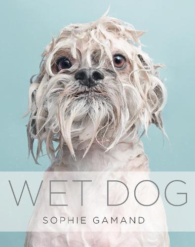 Wet Dog (Hardback)