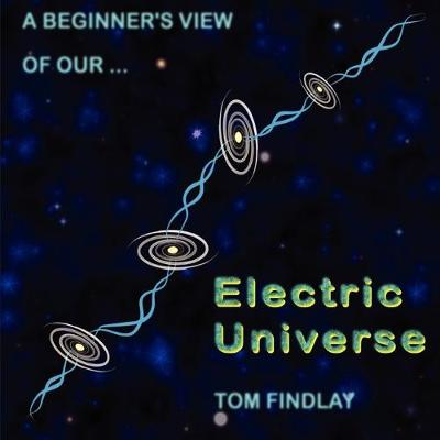 A Beginner's View of Our Electric Universe (Paperback)