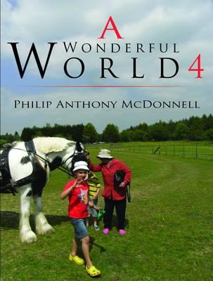 A Wonderful World 4: 4 (Paperback)
