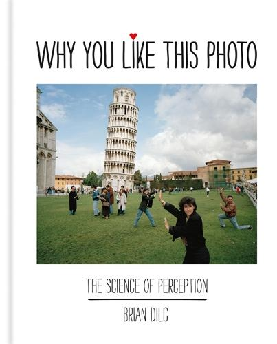 Why You Like This Photo: The science of perception (Hardback)