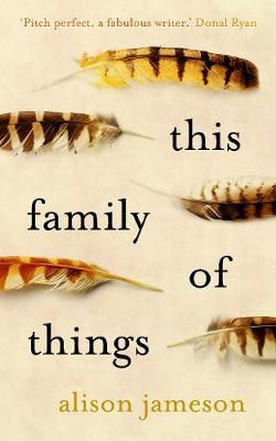 This Family of Things (Paperback)