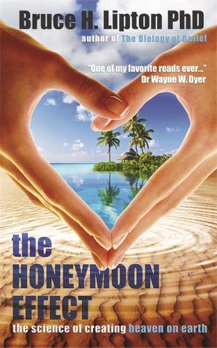 The Honeymoon Effect: The Science of Creating Heaven on Earth (Paperback)