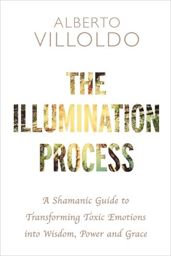 The Illumination Process: A Shamanic Guide to Transforming Toxic Emotions into Wisdom, Power and Grace (Paperback)