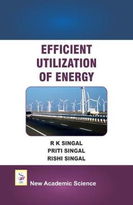 Efficient Utilization of Energy (Hardback)