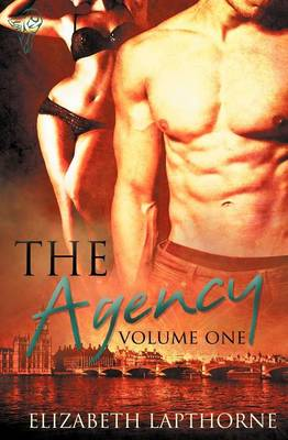 The Agency: Vol 1 (Paperback)