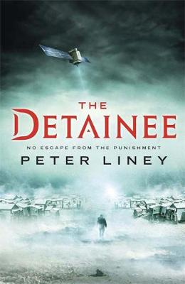 The Detainee: the Island means the end of all hope - The Detainee (Hardback)