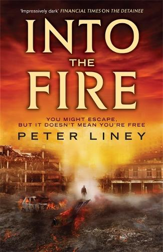 Into The Fire: The Detainee Book 2 - The Detainee (Paperback)