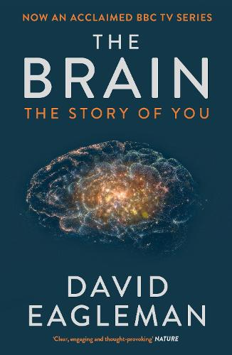 The Brain: The Story of You (Paperback)