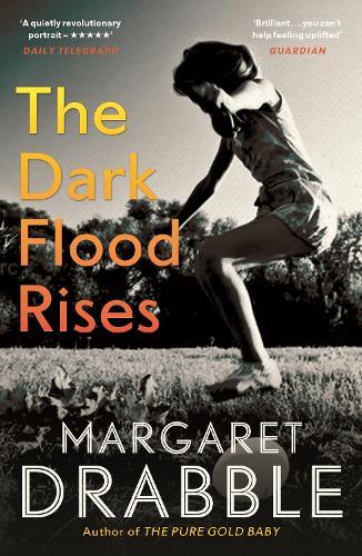 The Dark Flood Rises (Paperback)