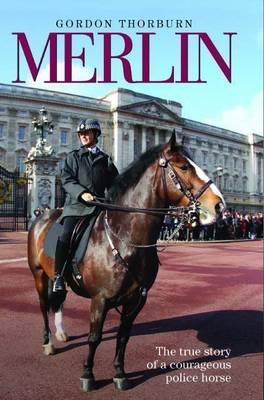 Merlin (Hardback)