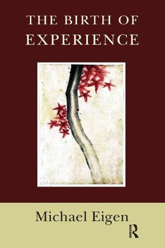 The Birth of Experience (Paperback)