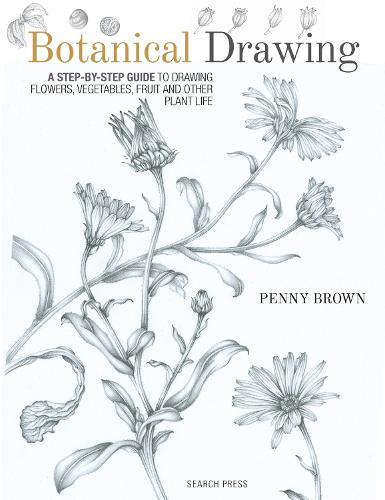 Botanical Drawing: A Step-by-Step Guide to Drawing Flowers, Vegetables, Fruit and Other Plant Life (Paperback)