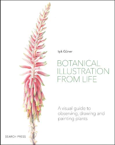 Botanical Illustration from Life: A Visual Guide to Observing, Drawing and Painting Plants (Paperback)