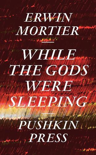 While the Gods Were Sleeping (Hardback)