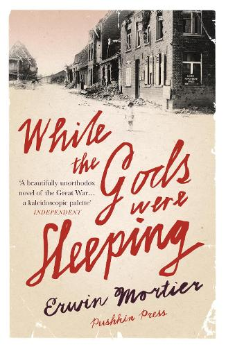 While the Gods Were Sleeping (Paperback)