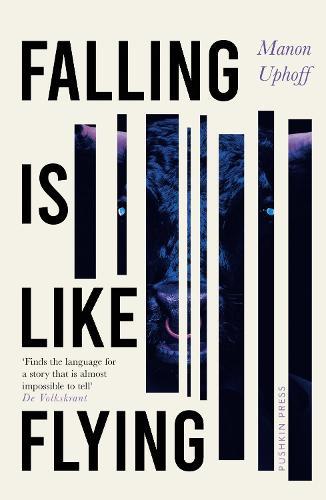 Falling is Like Flying (Hardback)