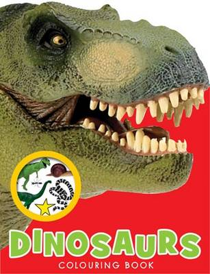 My Dinosaur Backpack - Boy and Girl Colouring and Sticker Books Series 2 (Paperback)