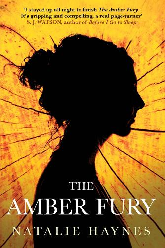 The Amber Fury (Hardback)