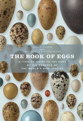 The Book of Eggs: A Lifesize Guide to the Eggs of Six Hundred of the World's Bird Species (Hardback)