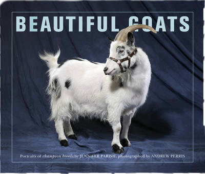 Beautiful Goats: Portraits of Classic Breeds Preened to Perfection - Beautiful (Paperback)