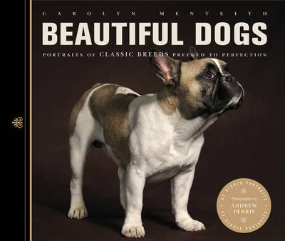 Beautiful Dogs: Portraits of Champion Breeds Preened to Perfection - Beautiful (Paperback)