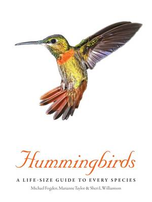 Hummingbirds: A Life-Size Guide to Every Species (Hardback)